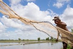 Fischen in den Reisfeldern | Kambodscha