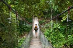 Hängebrücke | Sumatra