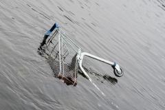 Einkaufswagen im Wasser | Salzburg