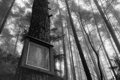 Marterl im Wald | Hirschbach
